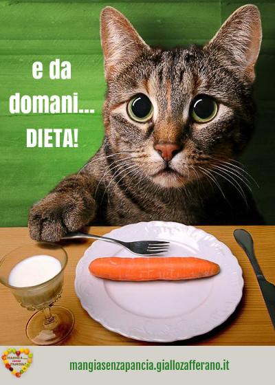e da domani dieta, diario di una dieta, oltre la dieta: il diario - 1 gennaio 2014, Mangia senza Pancia