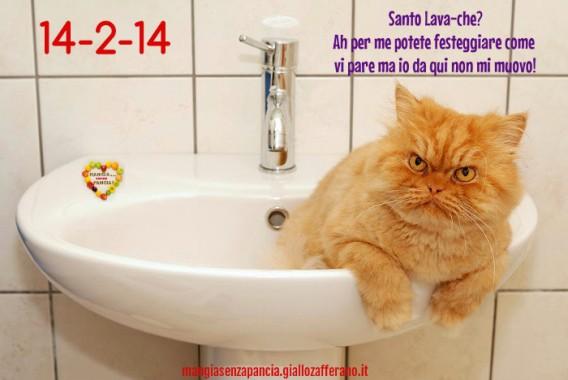 buon San Lavandino Valentino, oltre la dieta: il diario - 14 febbraio 2014, Mangia senza Pancia