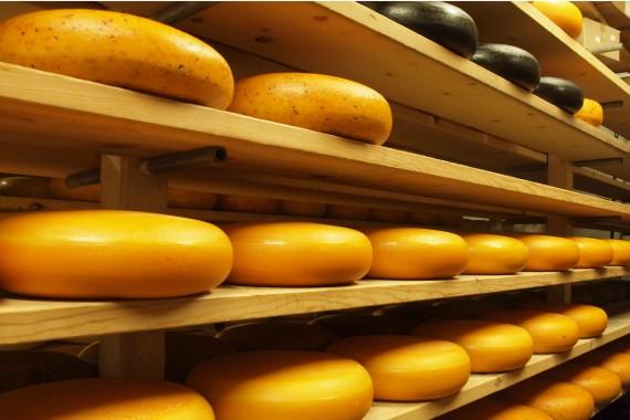 formaggio gouda, oltre la dieta: il diario - 23 marzo 2014, Mangia senza Pancia