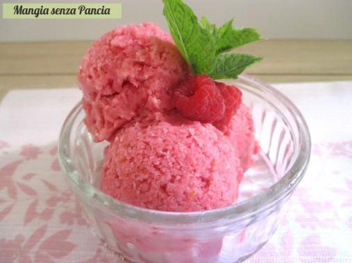 Sorbetto ai lamponi con yogurt: sherbet, Mangia senza Pancia