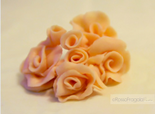 Rose-di-cioccolato-plastico