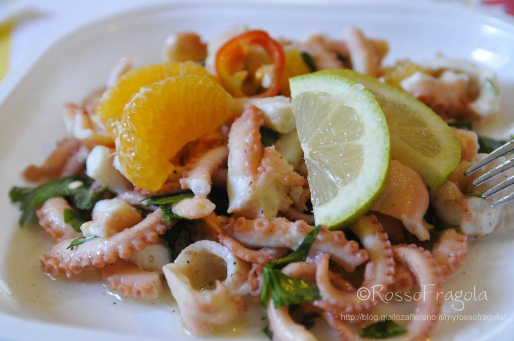 Ricerca ricette con funghetto di moscardini e calamari for Cucinare moscardini