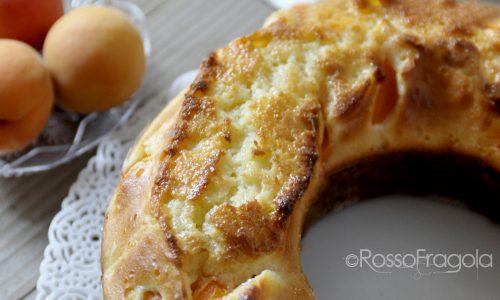 Ciambellone alle albicocche - ricetta soffice e golosa