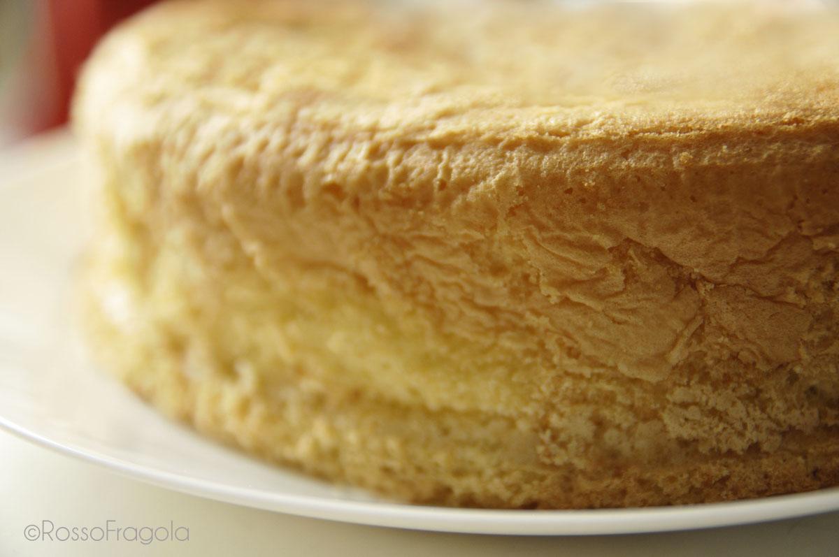 Il Pan di Spagna perfetto! Una nuvola soffice soffice...