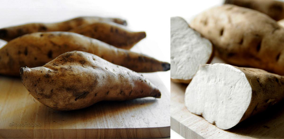 American potato - patate americane