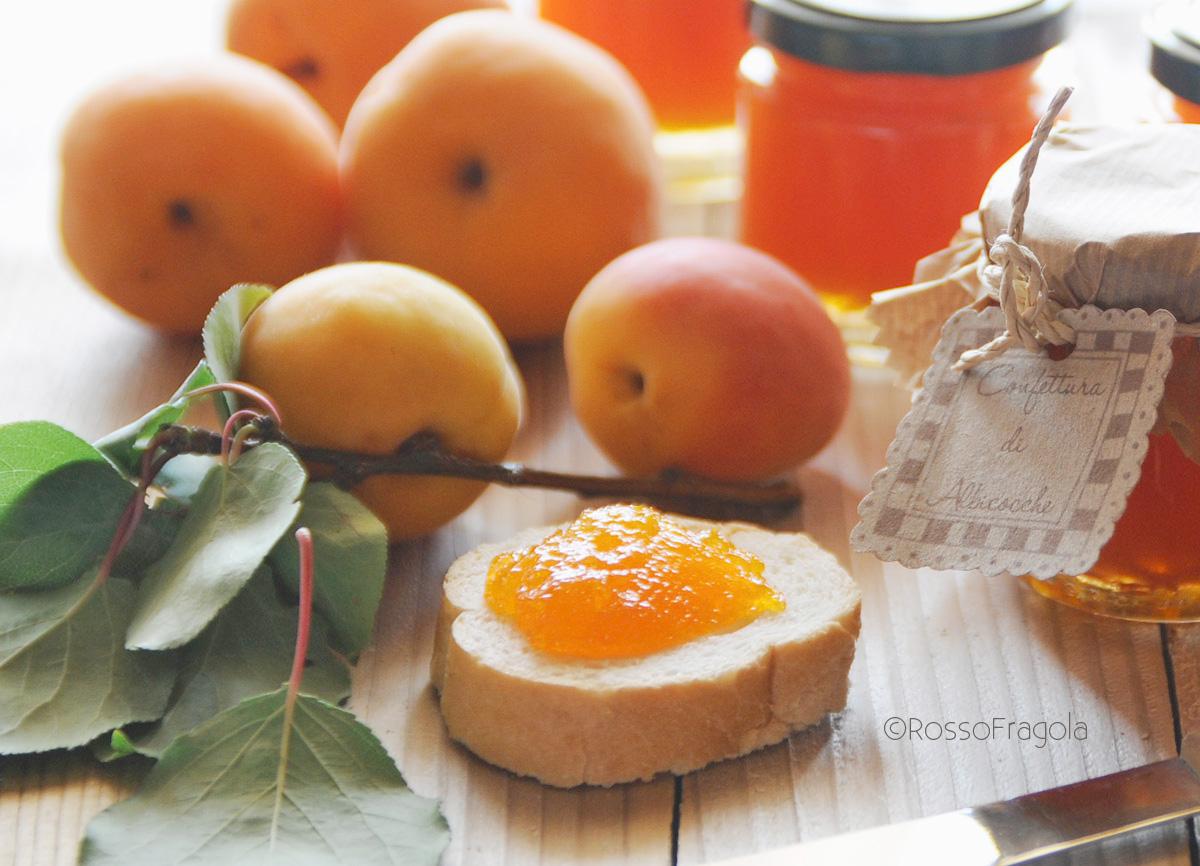 -marmellata di albicocche