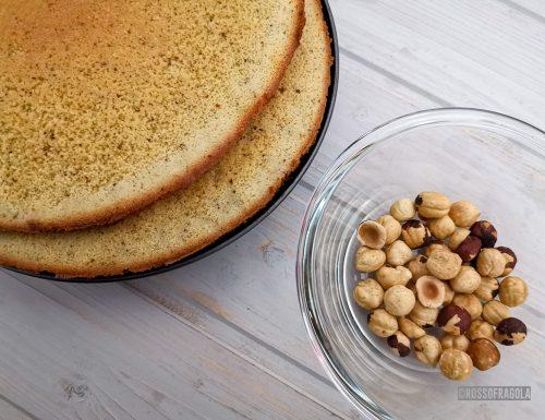 Biscuit alle nocciole – ricetta base per torte cremose