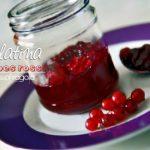 Gelatina di Ribes rossi - ricetta facile