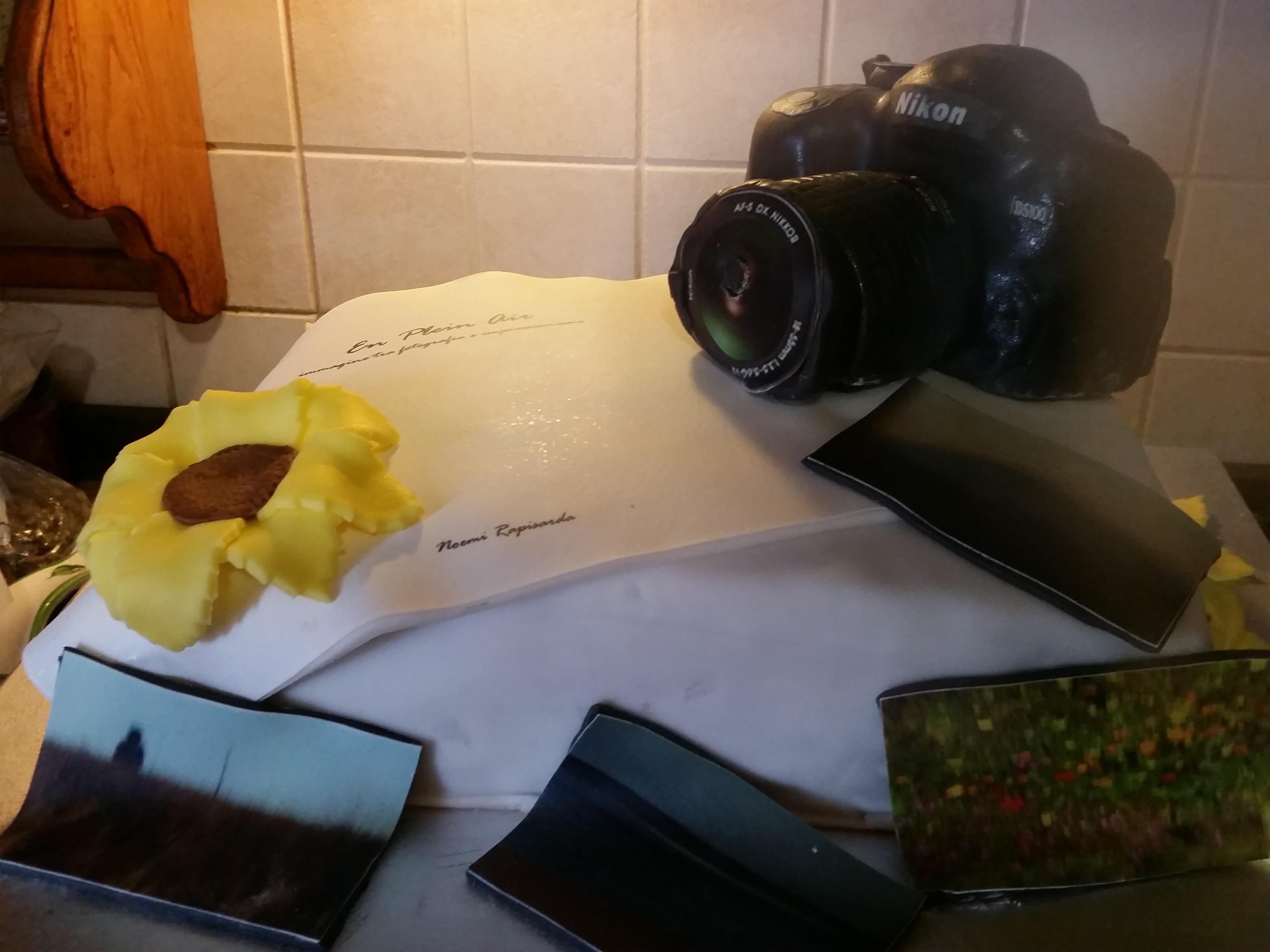 Torta di laurea in fotografia in Pasta di zucchero -pdz!