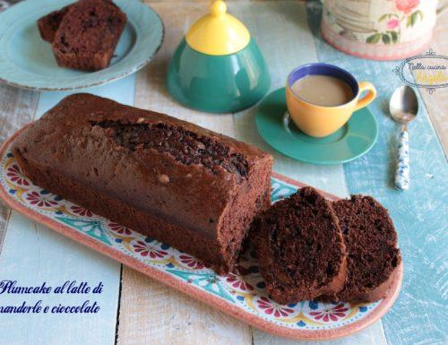 Plumcake al latte di mandorle e cioccolato
