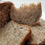 Pane integrale-La macchina del pane