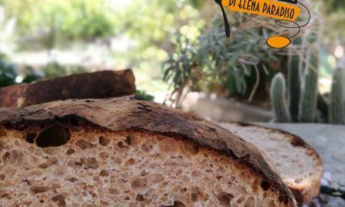 Pagnotta integrale con siero di latte (nel coccio o sulla pietra)
