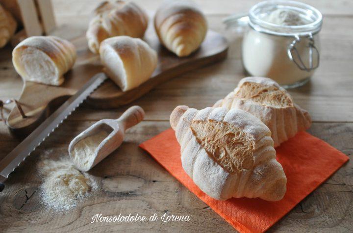 Panini alla semola di grano duro