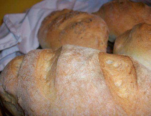 Pane con lievito di birra