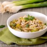 Insalata di orzo e lenticchie con zucchine ricetta facile