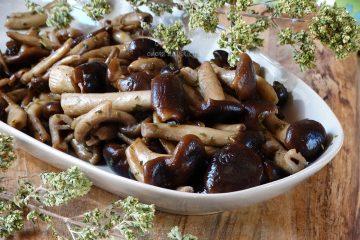 funghi pioppini trifolati