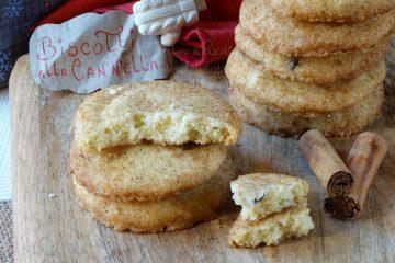 Biscotti alla cannella e gocce di cioccolato