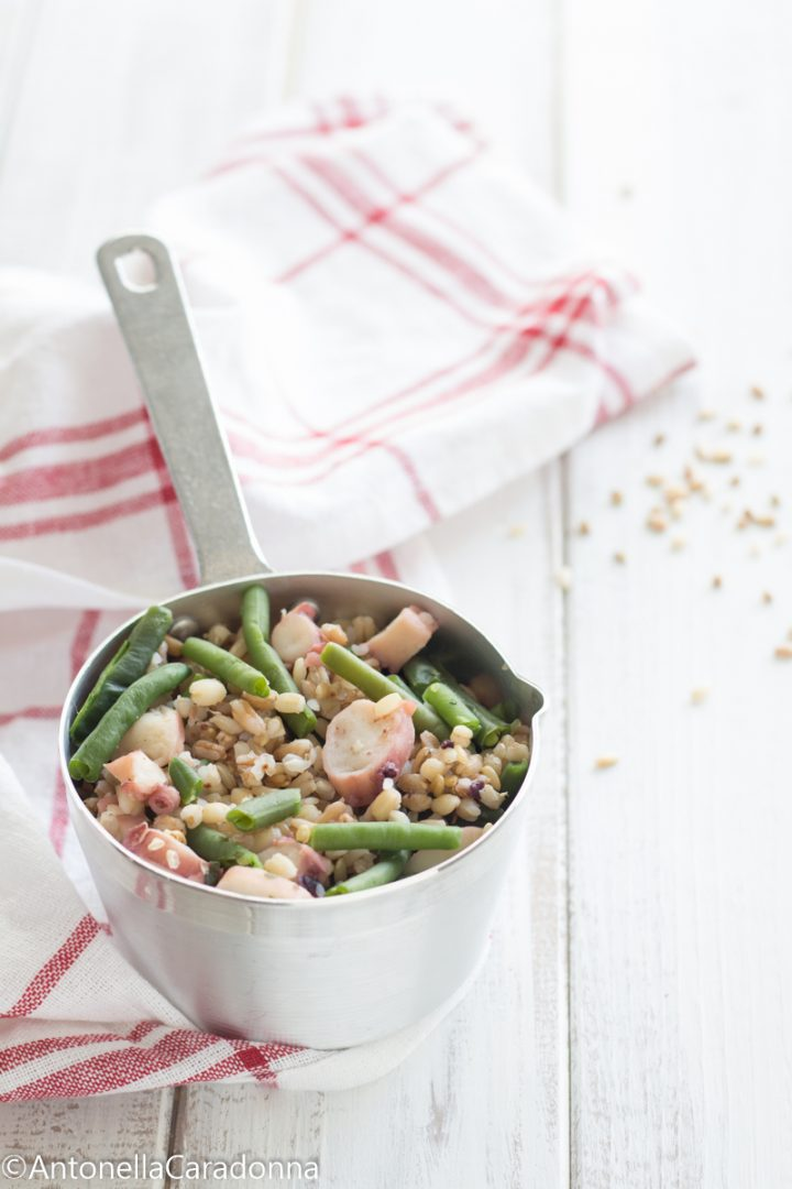 insalata di cereali con polpo e fagiolini