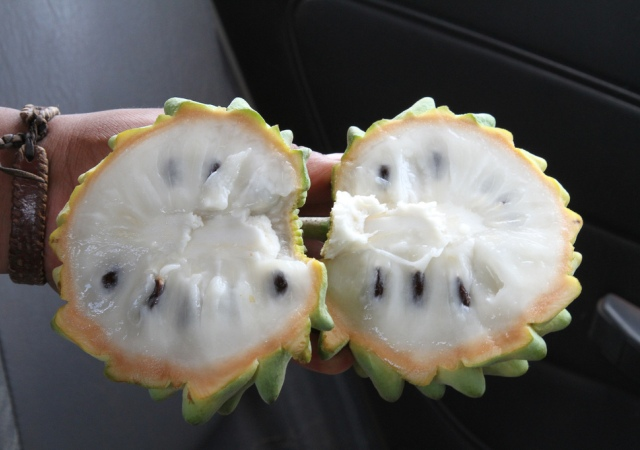 E' un frutto tropicale originario dell'America Latina