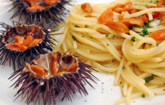 ricerca ricette con spaghetti ai ricci di mare