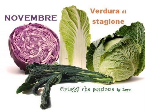 NOVEMBRE verdura di stagione