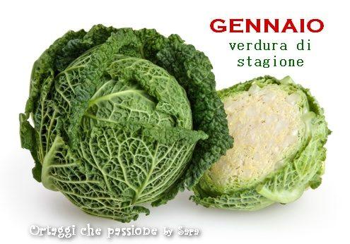 GENNAIO calendario verdura di stagione