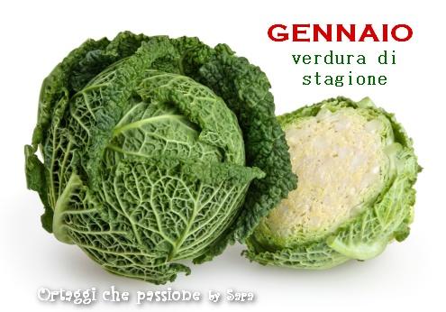 GENNAIO verdura di stagione Ortaggi che passione by Sara