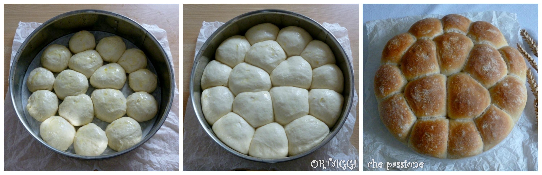 Torta panini con pasta madre Ortaggi che passione Sara