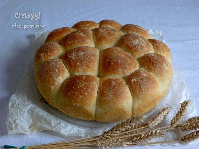 Torta panini con pasta madre Ortaggi che passione by Sara