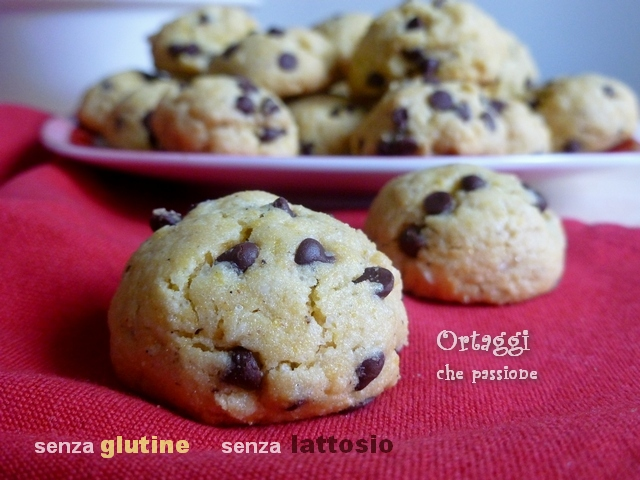 Biscotti senza glutine e lattosio