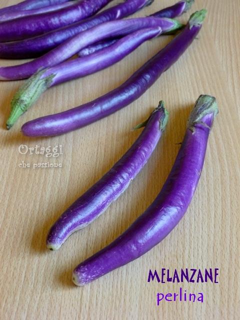 Melanzane perlina - melanzane fritte - Ortaggi che passione by Sara
