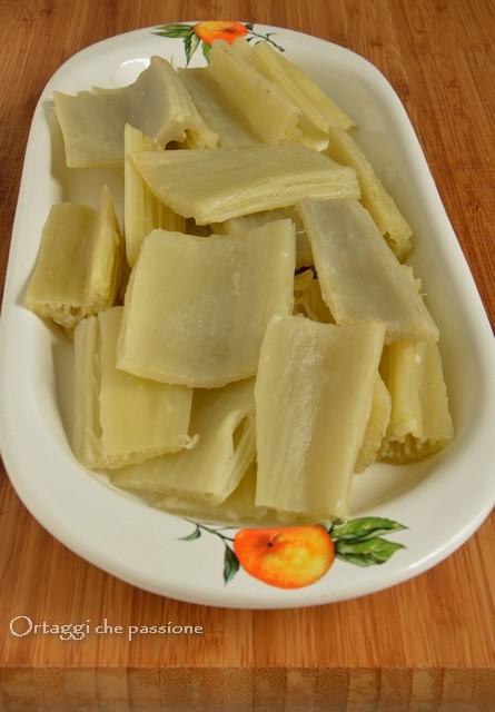 Cardo, cottura in bianco