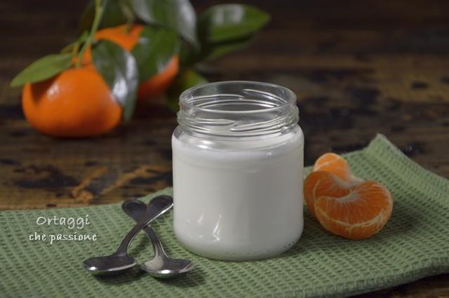 Yogurt fatto in casa, come fare lo yogurt con la yogurtiera