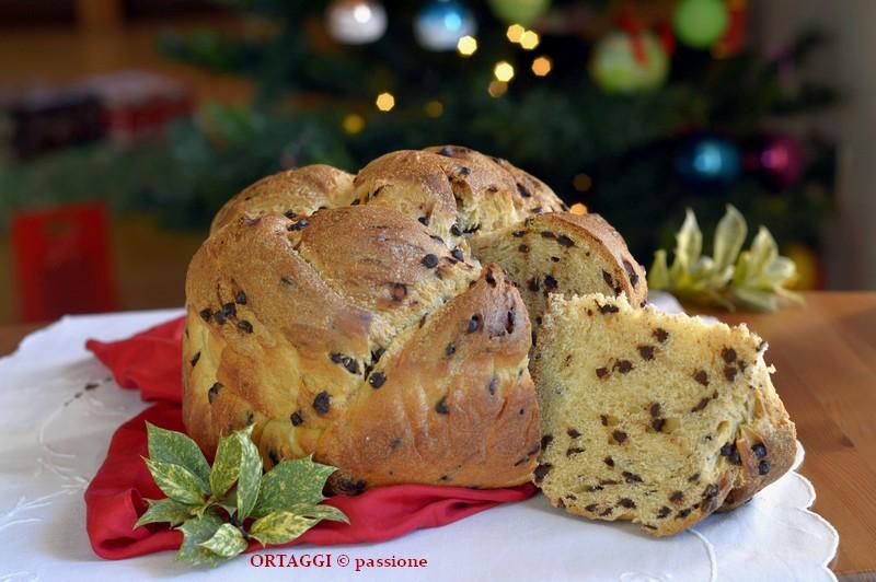 Sara Papa Ricette Dolci Di Natale.Cupola Intrecciata Al Latte Ricetta Di Sara Papa Con Lievito Madre Essiccato