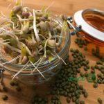 Cucina vegetale e gestione del tempo