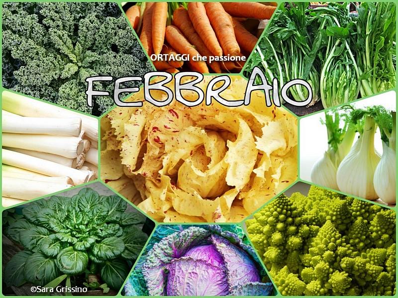 2 febbraio calendario verdura di stagione ORTAGGI CHE PASSIONE Sara Grissino