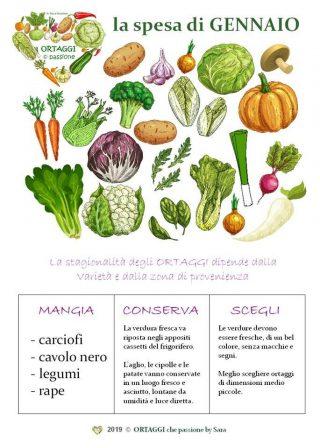 GENNAIO calendario verdura di stagione ORTAGGI © passione by Sara Grissino