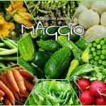 MAGGIO verdura di stagione – ELENCO completo