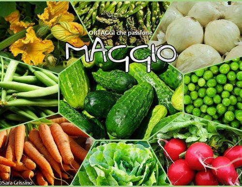 MAGGIO calendario verdura di stagione