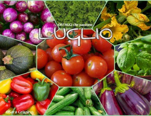 LUGLIO calendario verdura di stagione