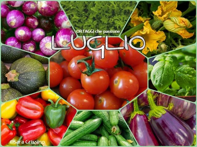 luglio-calendario-verdura-di-stagione ORTAGGI CHE PASSIONE © Sara Grissino