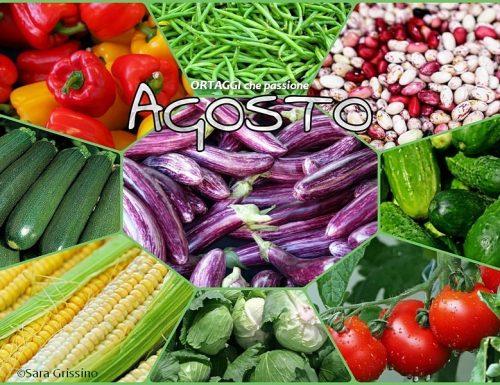 AGOSTO calendario verdura di stagione