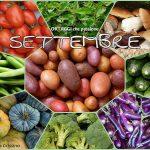 SETTEMBRE verdura stagione km0 – elenco con tutta la biodiversità