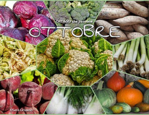 OTTOBRE calendario verdura di stagione