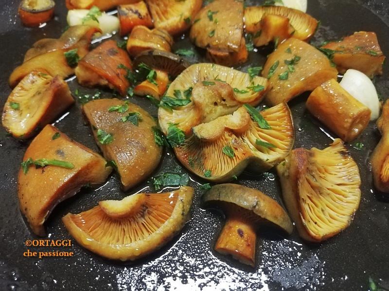 come cucinare i funghi dal sangue rositi - come cucinare ORTAGGI che passione by Sara Grissino