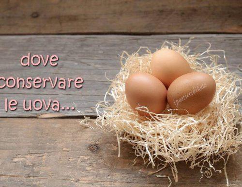 Dove conservare le uova e a che temperatura?
