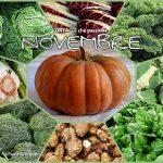 NOVEMBRE – elenco di tutta la verdura di stagione km0