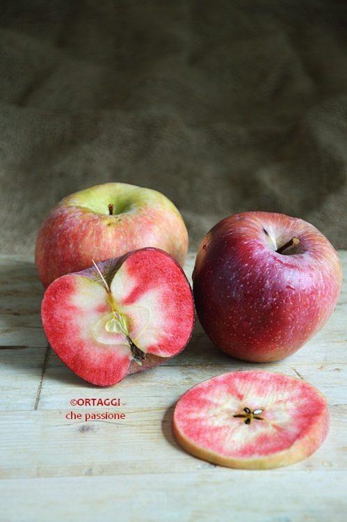 apple mela red love Sara Grissino