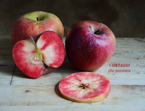 Mela red love frutto a polpa rossa
