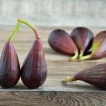 Fico Moro di Caneva – frutto antico del Triveneto